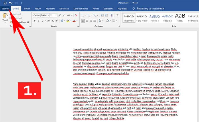 Printscreen z Wordu - postup